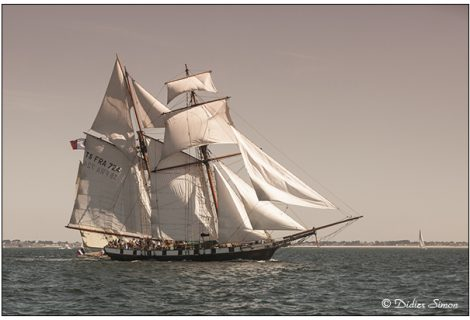 Semaine du Golfe (du Morbihan)
